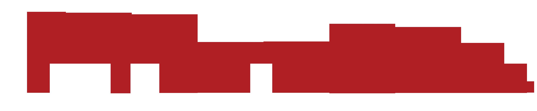 Primato Logo