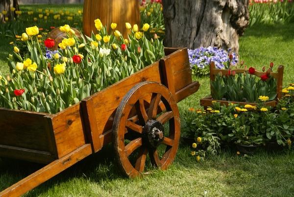 λουλούδια σε καρότσι - πότισμα λουλουδιών και φυτών